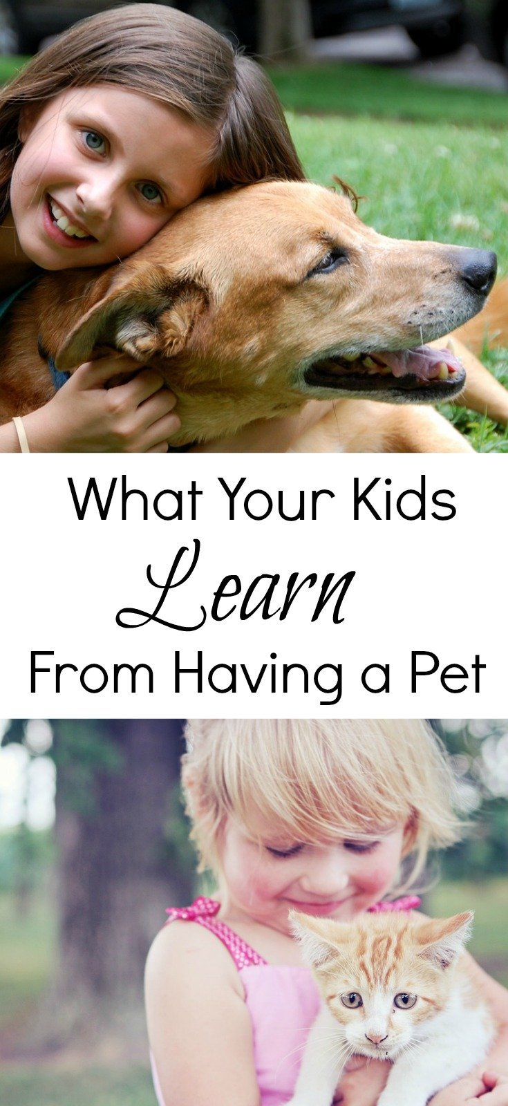 What your kids can learn from having a pet, the life lessons and responsibilities it teaches them and the types of children it can help